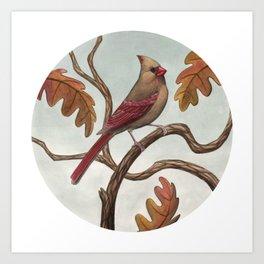 Cardinal (Female) Art Print