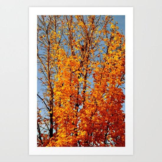 colorful tree Art Print
