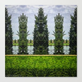 Reflected Pines Canvas Print