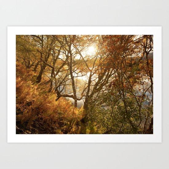 November falls Art Print