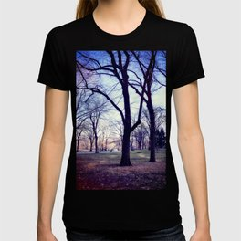 Wake Up In Your Dream World T-shirt