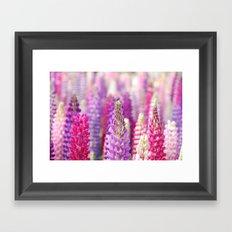 Pink & Purple FLowerS Framed Art Print