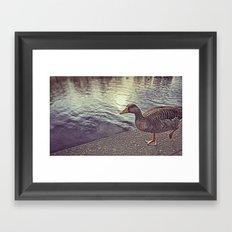 :: walk the line :: Framed Art Print