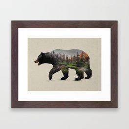 The North American Black Bear Framed Art Print