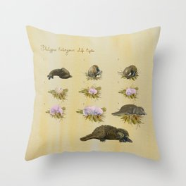 Platypus Embryonic Life Cycle Throw Pillow