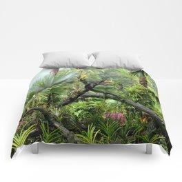 Singapore Botanical Garden 2 Comforters