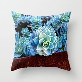 EUPHORBIA #2 Throw Pillow