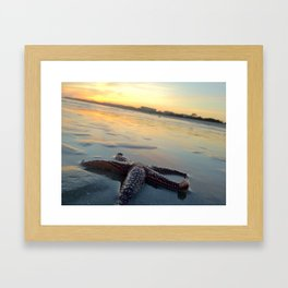 Starfish on the Beach Framed Art Print