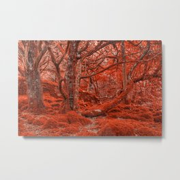 Ruby Moss Forest Metal Print
