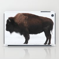 bison iPad Cases featuring Bison by Joe-LynnDesign