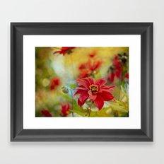 Dahlias Framed Art Print