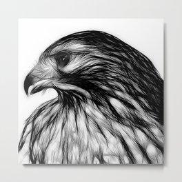 Hawk, v8 stripped Metal Print