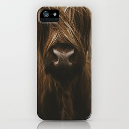 Scottish Highland Cattle iPhone Case