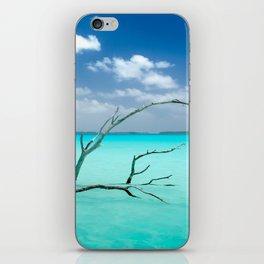 Driftwood in Lagoon iPhone Skin