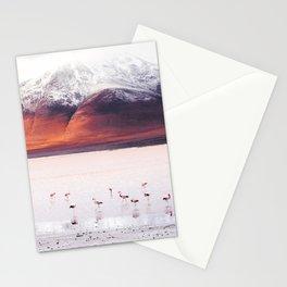 Bolivian Flamingos Stationery Cards