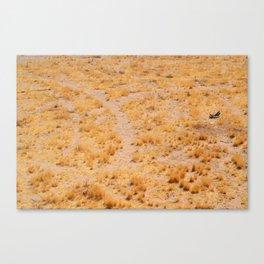 #13 Desert Canvas Print