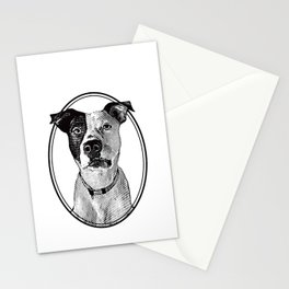Pit Bull with oval frame Stationery Cards