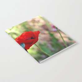 poppies in the summer Notebook