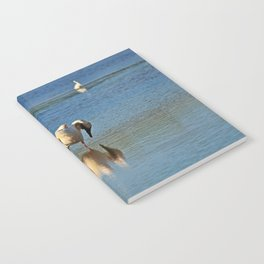 Hey, Margaret- Try This Notebook