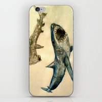 sharks iPhone & iPod Skins featuring Sharks by Jen Hallbrown