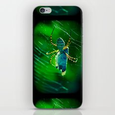 Nature Bijoux iPhone & iPod Skin