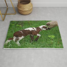 Cute Brown and White Lamb with Ewe  Rug