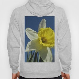 Daffodil Out of the Blue Hoody