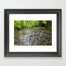 Spawning Grounds Framed Art Print