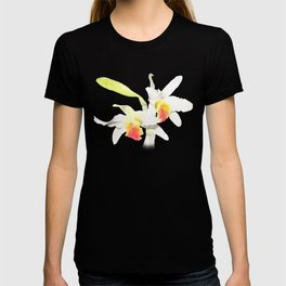 Dendrobium Heterocarpum 2 T-shirt