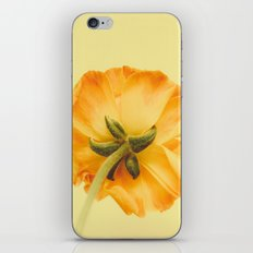 arriere iPhone & iPod Skin