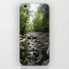 Stream scene iPhone & iPod Skin