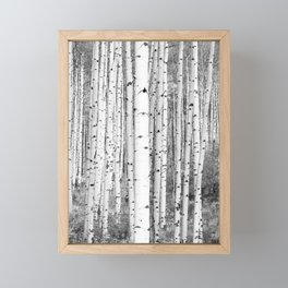 Aspen Trees in Black & White Framed Mini Art Print