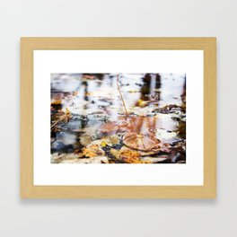 Autumn Leaves in Lake Framed Art Print