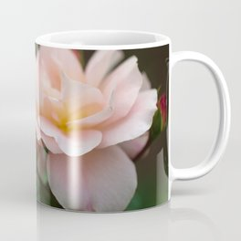 Creme Color Rose with Red Buds Coffee Mug