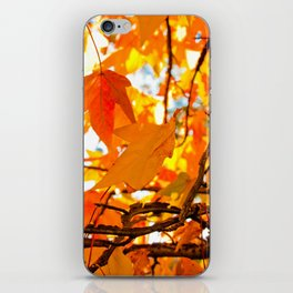 Autumn Leaves in New York City iPhone Skin