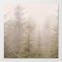 into the wild Canvas Prints featuring Wild..... by Guido Montañés