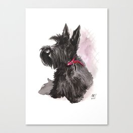 Scottish Terrier posing Canvas Print