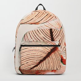 Unbridled - fall Backpack