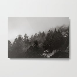 Misty Forest in Black and White III Metal Print
