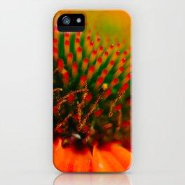 Gaillardia Aristata Pursh iPhone Case