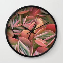 Succulents in Color Wall Clock