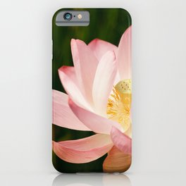 Radiant Lotus iPhone Case