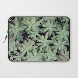 Succulent Abstract Laptop Sleeve