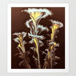 Nightflower Art Print