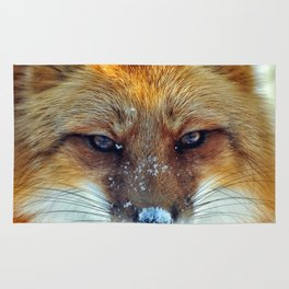 Snow on the Red Fox Noze Rug