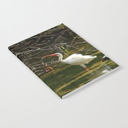 Ibis Dating Place Notebook