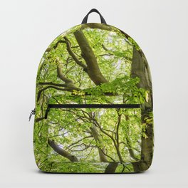 Beech Tree Backpack