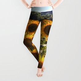 The Sunflower Summer Leggings