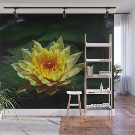 Yellow water lily Wall Mural