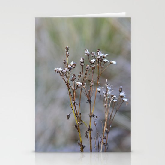 Frosty Seeds Stationery Cards